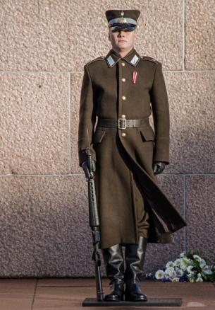 Soldier on guard duty at Brīvības piemineklis
