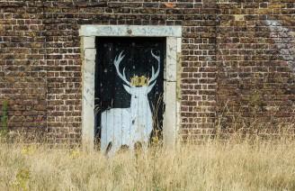 stag in doorway, Lewisham U.K.