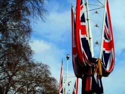Royal Bunting on The Mall, London U.K.