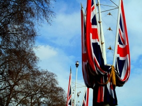 Royal Bunting on The Mall, London U.K.