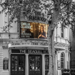 The Seagull at The Playhouse